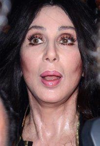 Cher, después de amasarse y estirarse la cara unas cuantas veces. A sus 198 años, se conserva igual que a los 17.